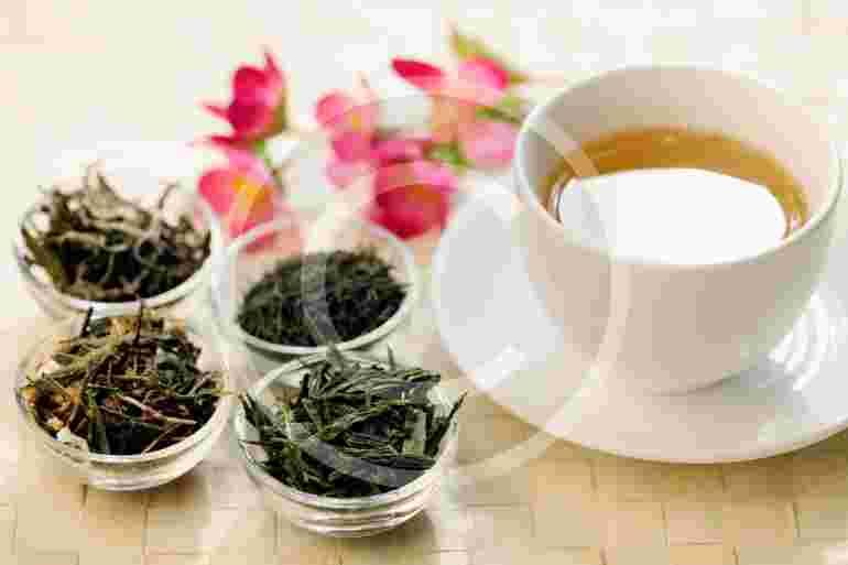 Come to The Northwest Tea Festival!